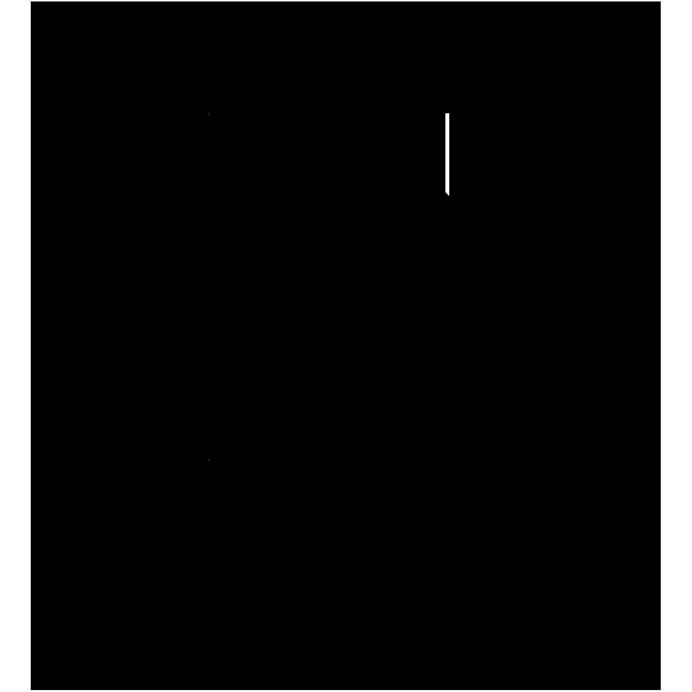 Kopf2